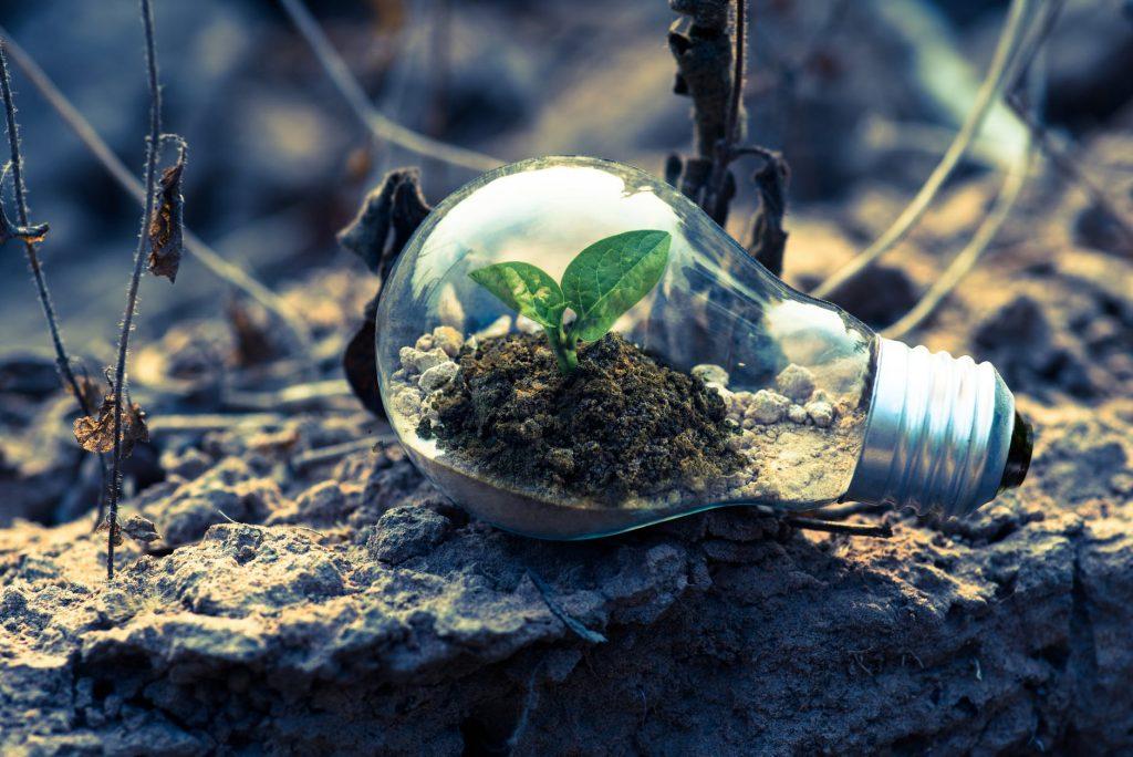 Akcyza dla odnawialnych źródeł energii